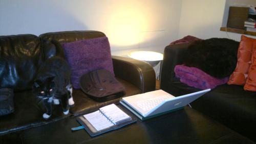 Rebecca chance writing room