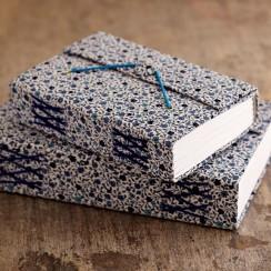 Daisy-blue-journals