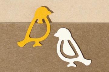 Midori Paper Bird Index Clips