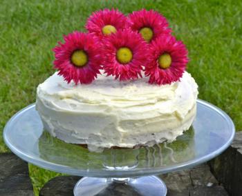 Birthday Cake for Novelicious