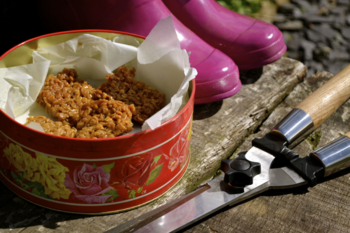 Peanut Butter Flapjacks from Ivy Lane by Cathy Bramley