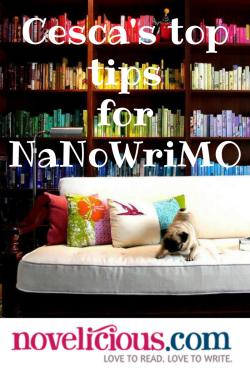 Cesca's Top Tips for NaNoWriMo