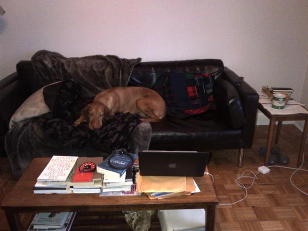 My Writing Room by Helen Humphreys - Novelicious com   The